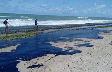 Perita em danos ambientais por vazamento de óleo alerta: Estamos sendo feitos de tolos. Como veem manchas chegarem às praias e não acionam imagens dos satélites?